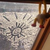 К выходным в Омской области потеплеет больше, чем на 10 градусов
