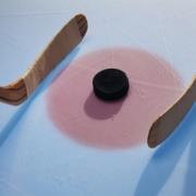 Завершился чемпионат Любительской хоккейной лиги