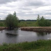 Подтопленными в Омской области остались 12 приусадебных участков