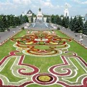 В Омске зацветет гармонь