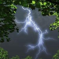 В Омской области двое детей пострадали от удара молнией