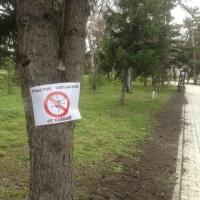 Омские парки обработают против клещей и малярийных комаров