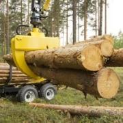 Омский лесной бизнес выступил за экологию и инновации