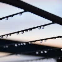 Июль в Омске начинается с дождливых выходных