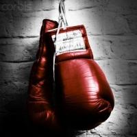 Омские молодые боксёры взяли 80 процентов наград на турнире памяти Михаила Балашова