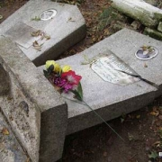 Вандалы повредили 8 могил на омском кладбище