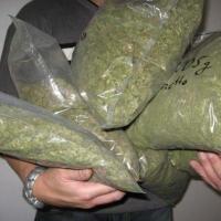 В Омской области наркополицейские изъяли 9 килограммов марихуаны