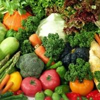 Омские пограничники задержали более тонны овощей-нелегалов