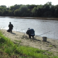 В водоемах Омской области можно поймать карпа, судака и другую рыбу