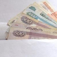 В Омской области за год выявили 6500 коррупционных преступлений