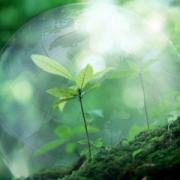На экологию потратят 72 млн рублей