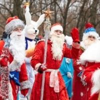 Городскую Елку Омска откроет дефиле Дедов Морозов
