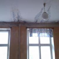 В Омской области суд обязал администрацию Седельниковского района отремонтировать школу