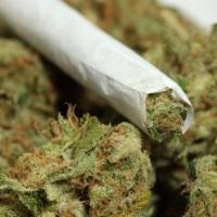 В Омске задержали мужчину с пакетом марихуаны