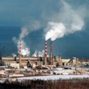 В Омске планируют развернуть производство целлюлозы