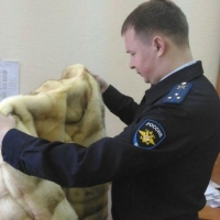 Сотрудница омского банка после корпоратива осталась без шубы