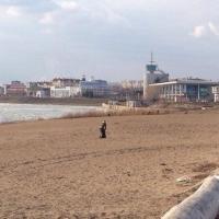 В Омске 1 июня откроют пять официальных пляжей, но купаться на них будет нельзя