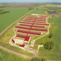 При поддержке Сбербанка в Омской области появится свиноводческий комплекс