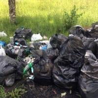 С начала года из Омска  вывезено более 145 тысяч кубометров мусора