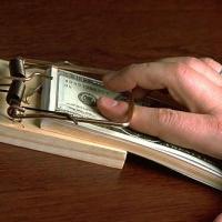 Чиновников хотят сажать пожизненно за хищение госсредств