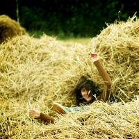Омичам для празднования Дня города завезут свежее сено
