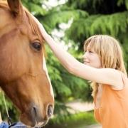 Чиновница сельской администрации Омской области получила кредит на несуществующих лошадей