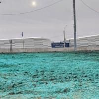Стало известно, зачем покрасили землю у омской ХА «Авангард»
