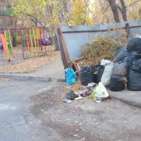 Омичи жалуются на неприличную близость мусорки к детской площадке