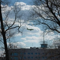 Бурков поручил увеличить число субсидируемых рейсов из Омска
