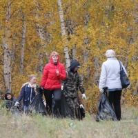 За два месяца жители Омской области высадили 52 тысячи лесных саженцев