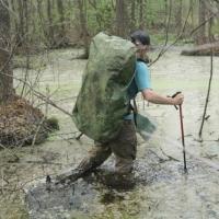 Замминистра культуры прокомментировала идею болотного туризма в Омской области