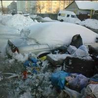 В Омске на помойку выбросили Jaguar