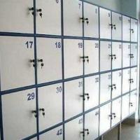 Омские подростки ограбили камеру хранения, вскрыв ее шпильками
