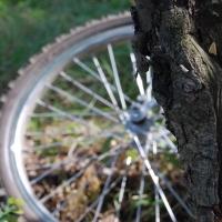 Омского водителя, скрывшегося с места ДТП и заплатившего велосипедистке, ждет наказание