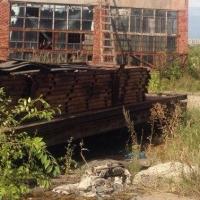 Сотрудники омской Росгвардии задержали троих рецидивистов с краденным металлоломом