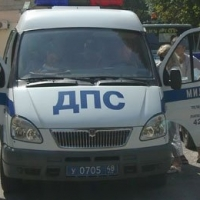 Омская полиция нашла водителя, сбившего насмерть 19-летнюю девушку