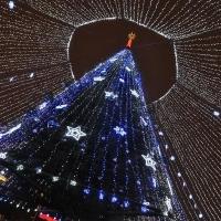 В Советском округе установят 25 новогодних елок