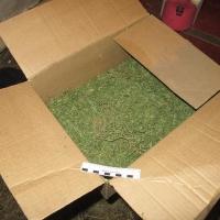 У четырех жителей Омской области наркополицейские изъяли более шести килограммов марихуаны