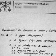 Омскую школьницу не накажут за дурость