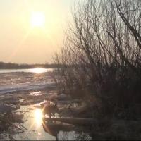 На севере Омской области обнаружили опасное вещество в реке