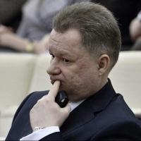 Лицкевич освобожден от обязанностей представителя президента в коллегии судей Омской области