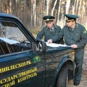 В Омской области снова горят леса