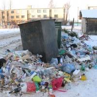 Минприроды требует от мэрии ликвидации трех стихийных свалок в Омске