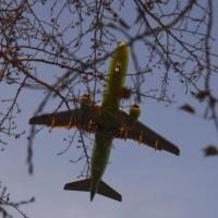 Со следующего года стоимость авиабилетов планируют увеличить на 18%