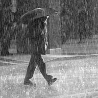 В Омской области ожидаются ливень, гроза и сильный ветер