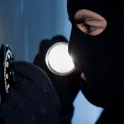 Офисные грабители отравили собак, а затем украли 400 тысяч и 4 бутылки виски