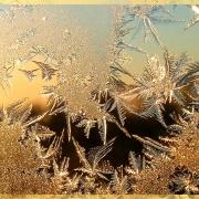 Морозы вышли каникулами