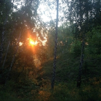Неделя в Омске ожидается теплой и солнечной