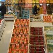 Столичные инвесторы за 10 миллиардов сделают Омск овощной столицей России