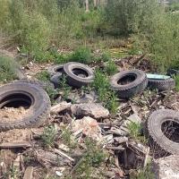Мусорные полигоны планируют построить в двух районах Омской области
